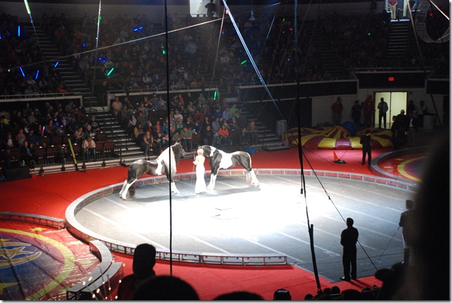 Circus 133