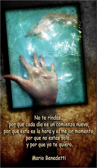 no_estas_solo