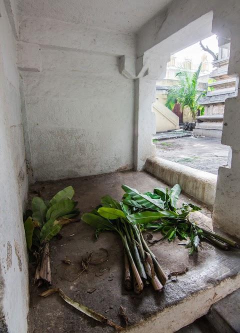banánové listy, Sri Kodi Someshwara Swami