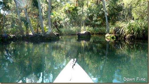 Chassahowitza River canoeing_045