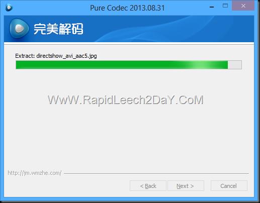 Pure Codec 2013.08.31 - 3