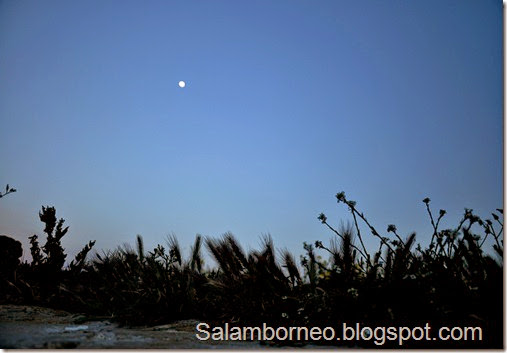 DSC_0189_Fotor_Fotor
