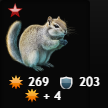 dwarfsquirrel