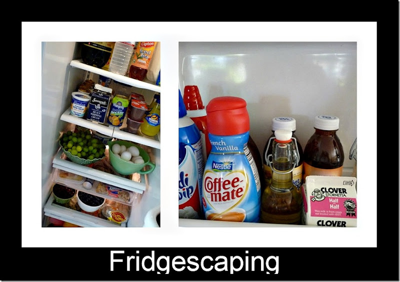 Fridgescaping Ribbet collage