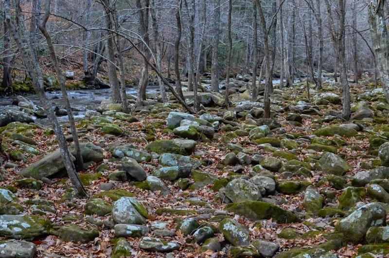 Laurel Snow area visit-17891