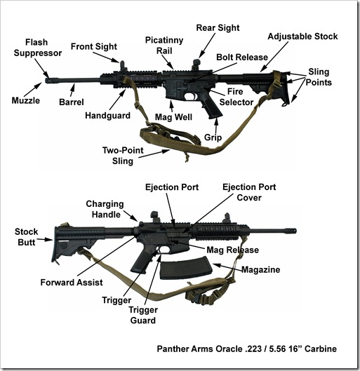 DPMS 223 Carbine Discription