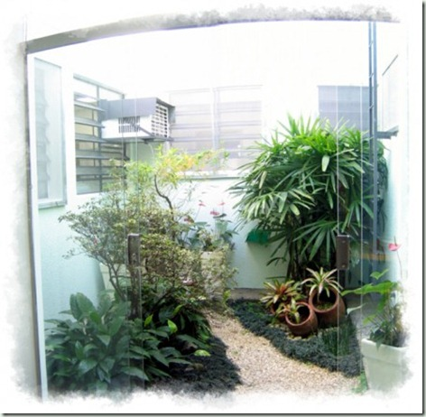 Jardim de Inverno (1)
