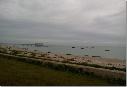 Selsey 010