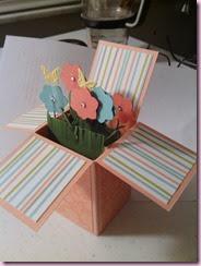 Flower Box3