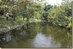 kolam 2