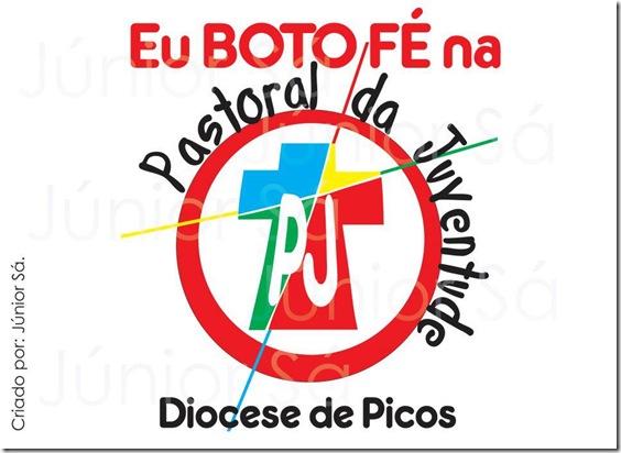 pastoral_da _juventude_ diocese_de_picosj