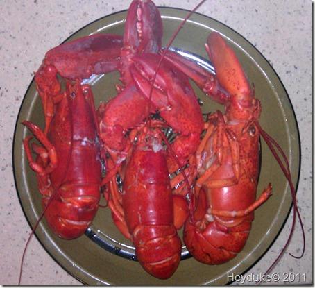 3.99 per lb lobster