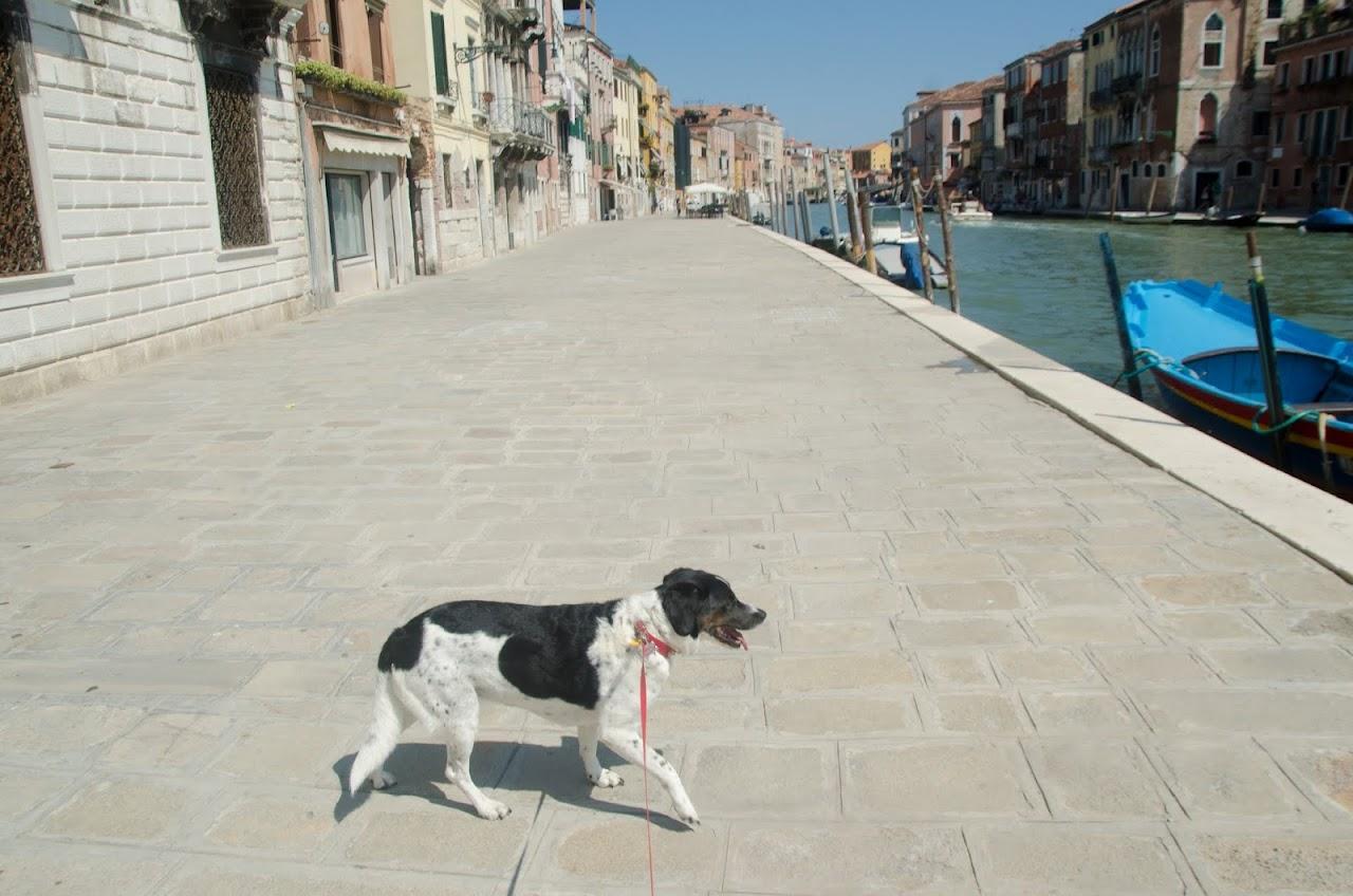 Abby in Venice