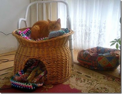 Basket for Lily