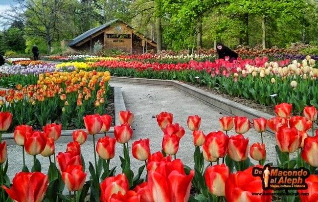 Parque Floral de Paris Bosque de Vincennes 9