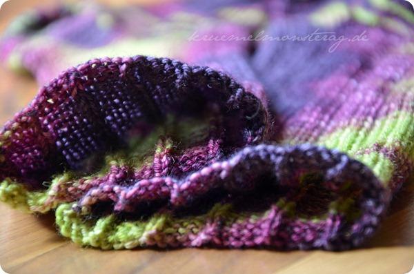 30_2012 Tausendschön Elfenblume (5)