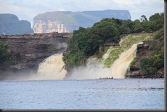AF - Canaima wf close up