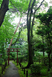 A beautiful pathway at the open air Edo museum