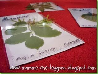 Mamme Che Leggono 2013 - 17 ottobre (9)