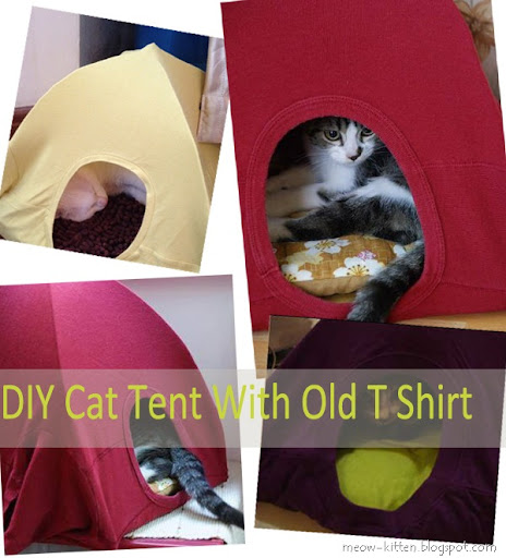 Easy 3 Steps to DIY cat tent with your old T shirts & Easy 3 Steps to DIY cat tent with your old T shirts - Meow-Cat.com