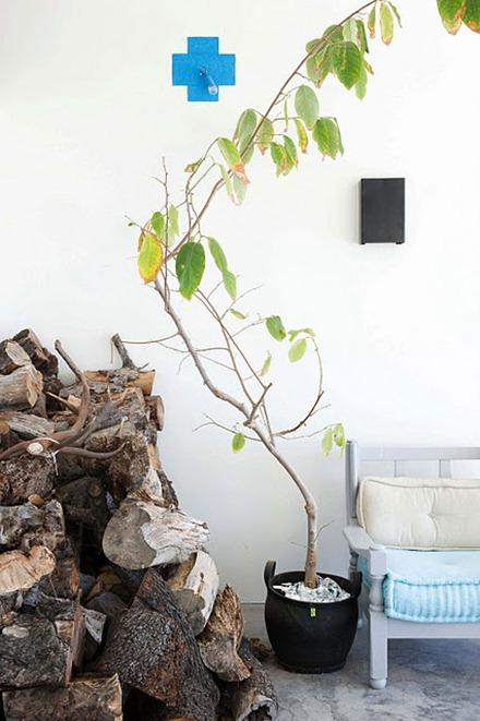 Träd inomhus, AnoukB Interior