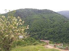 2009.05.23-023 montagne noire