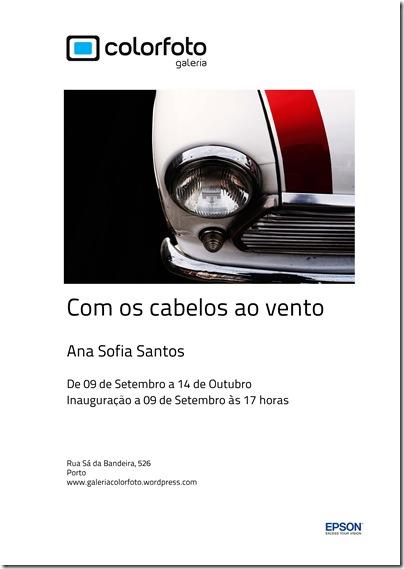 Ana Sofia Santos - Exposição clássicos