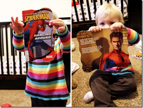 Spiderman Picture A Day