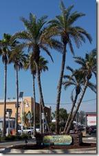 2012-02-23 Lake Manatee State Park FL 046