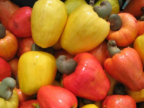 Cashew declines on subdued demand