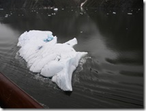 Alaskan Cruise 2 023