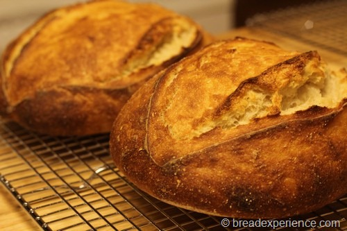 sourdough_bread055
