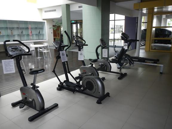 17 供民眾免費使用的健身器材.JPG
