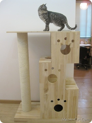 cat tree plans-2