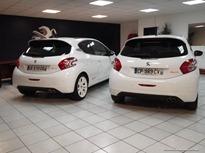 Peugeot-208-Rallye-2