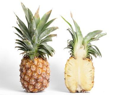 mol-buah-buahan