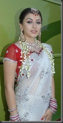 hansika-motwani-transparent-saree