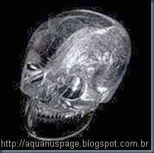 crânio de cristal paris