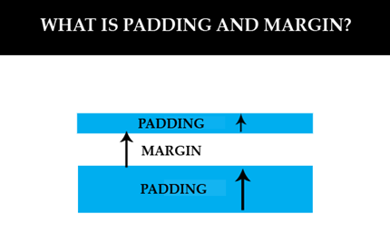 padding and margin