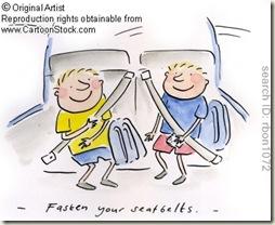 fasten-seatbelt