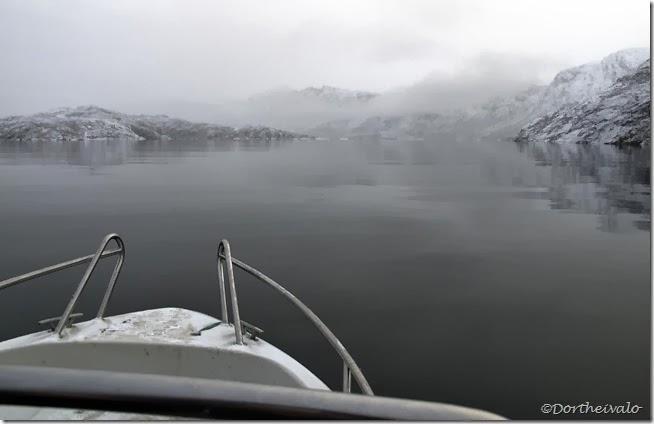 Mundingen af Kangerluaarsuk Tulleq/1.fjord