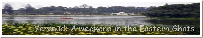 Yercaud: A weekend in the Eastern Ghats