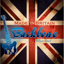 Backbone Blues Band CD 2014 2.png