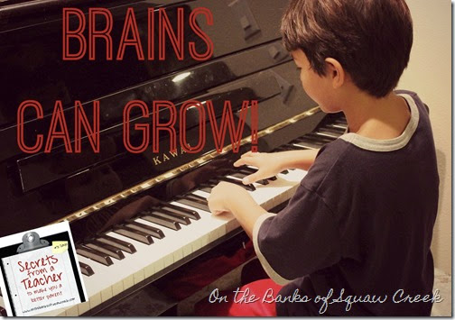 brains grow