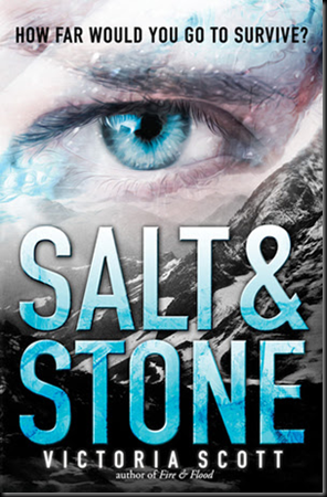 salt-and-stone