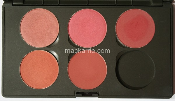 c_PowderBlushX6CustomPaletteMACPlum