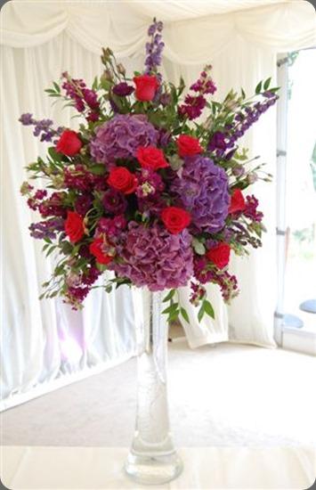 Hydrangea 3 mood flowers