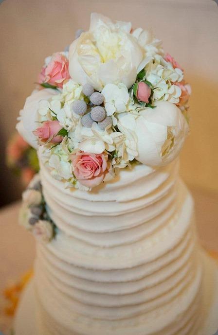 cake 542678_510977785607645_766169794_n dr delphinium