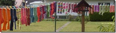 2012_07 Sockenwäsche (5)