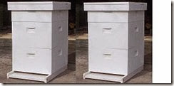 2hives